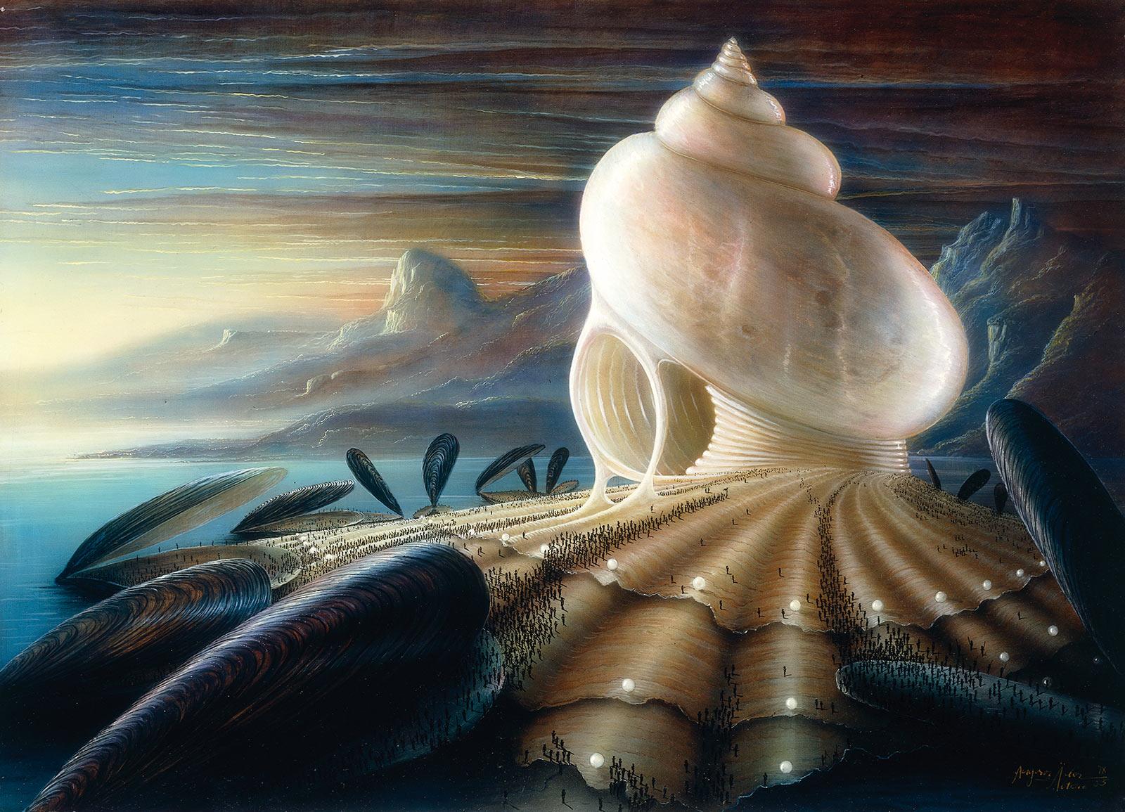 Muschelbelagerung 60/80 cm verkäuflich