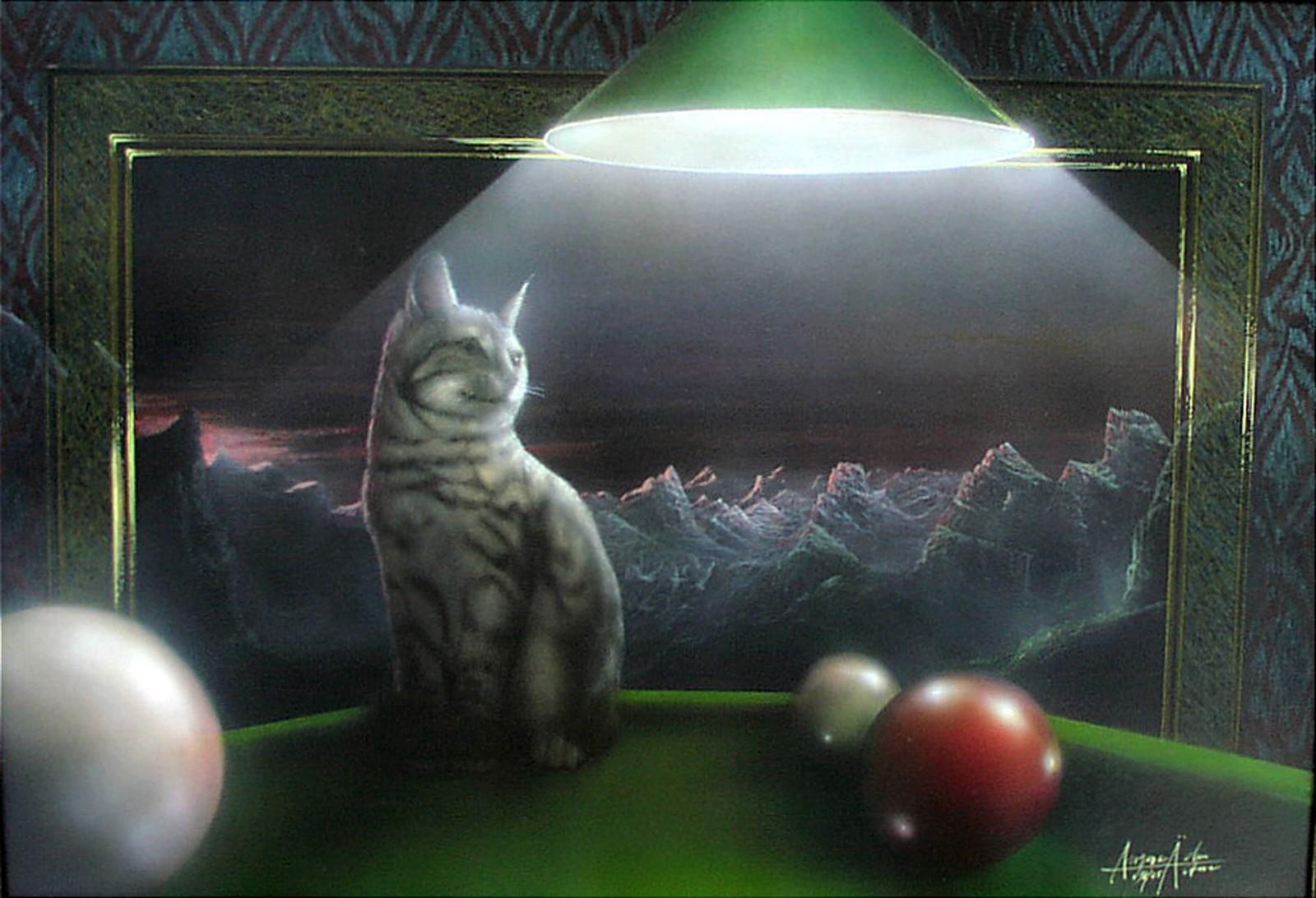 Katze auf dem Billardtisch - auf Anfrage